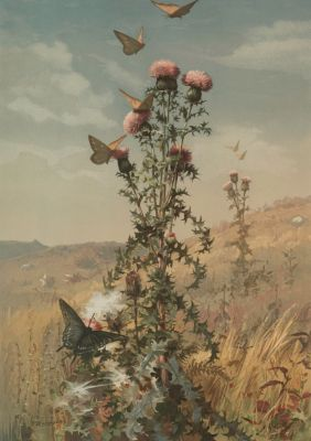 Fidelia BRIDGES Thistle and Landscape