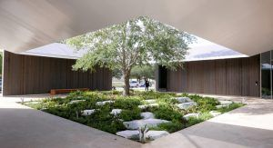 Menil Drawing Institute: pre-doctoral Fellowship