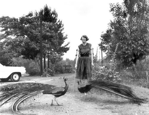 Flannery O'Connor in the driveway of her Andalusia Farm estate 1962