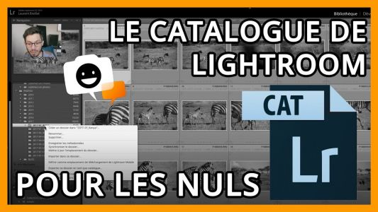 Tout comprendre du catalogue de Lightroom